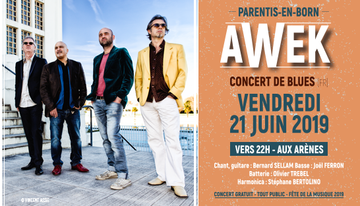 AWEK - CONCERT DE BLUES